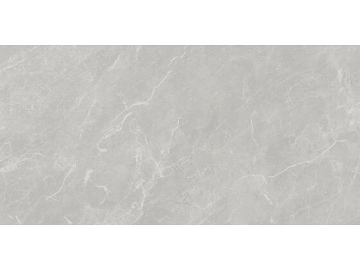 Carlet Grey Gloss 250x500mm Ceramic Wall Tile image