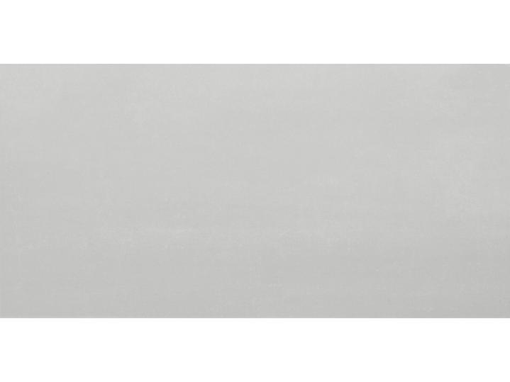 Montesa White Matt 250x500mm Ceramic Wall Tile image