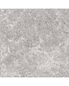 Altinum Silver Matt Glazed Porcelain 600x600x20mm