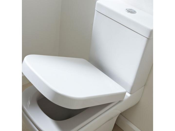 Miniature Pan/Cistern/Soft Closing Seat image