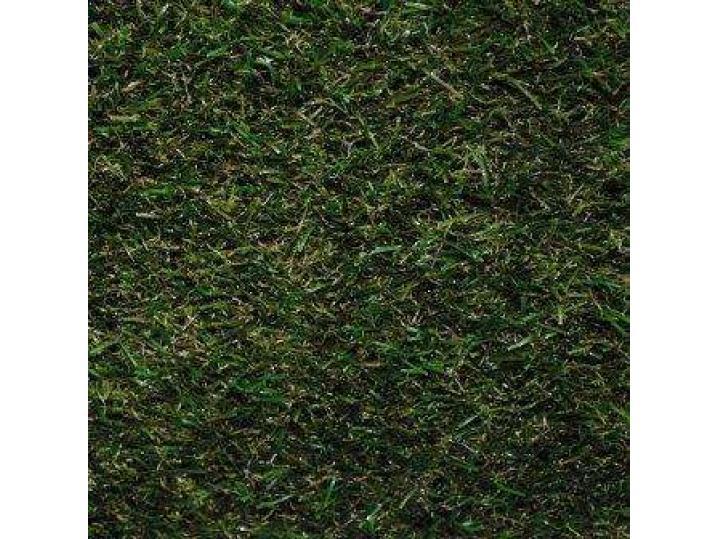 oryzoncoloradograss.jpg